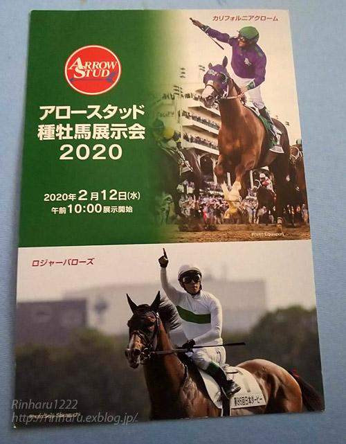 2020 如月の馬旅~プロローグ_f0250322_21293819.jpg