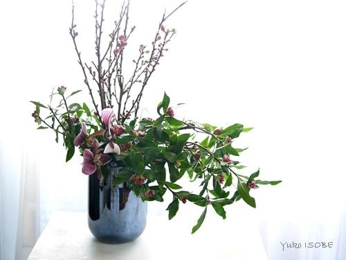2月のおもてなしの中国茶レッスン_a0169924_12204006.jpg