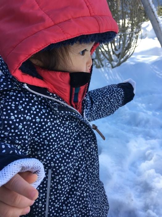 雪遊びに行ったときの写真_e0155231_02274046.jpeg