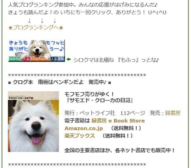 お詫び_c0062832_12031289.jpg