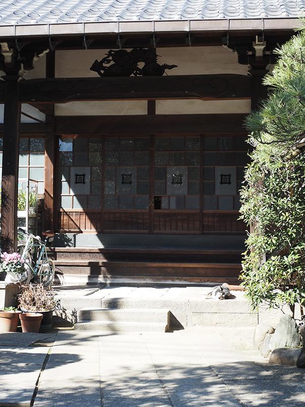 Hello from Tokyo 117 根津食べ歩き_a0003650_22505233.jpg