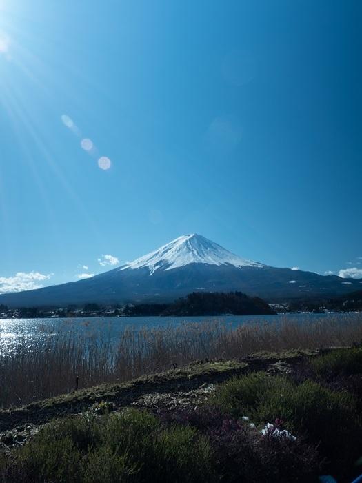 美しい富士の麓へ、宿泊研修に行きました!_f0041153_13252910.jpg