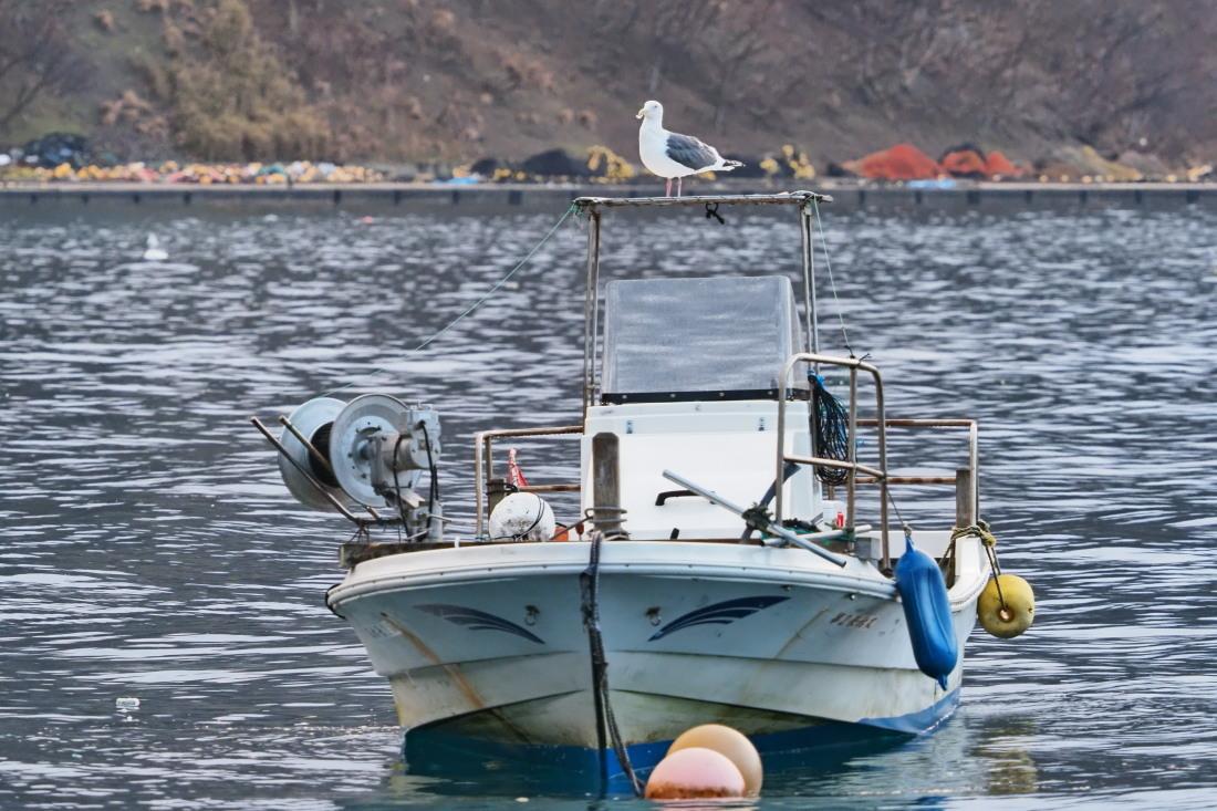 漁港寸景   福井県_d0286954_07371095.jpg