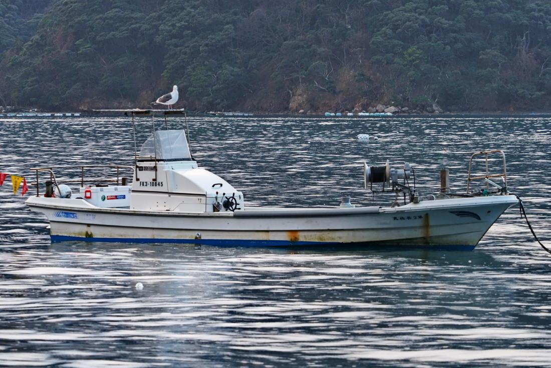 漁港寸景   福井県_d0286954_07371628.jpg