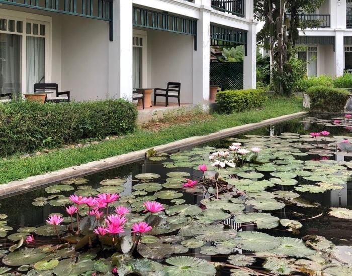 ラオスの旅 25  ルアンパバーンのホテル The Grand Luang Prabang_a0092659_19331746.jpg