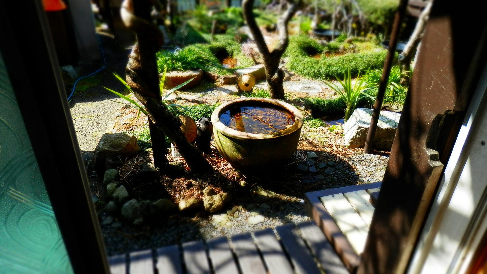 古民家再生、昭和レトロに。_b0362866_12370137.jpg