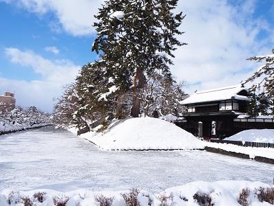 弘前城雪燈籠まつり_2020.02.11_d0131668_14272178.jpg