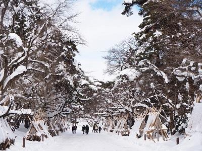 弘前城雪燈籠まつり_2020.02.11_d0131668_14273867.jpg