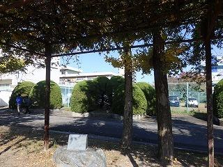附中歴史探訪 記念碑・記念樹10_d0383872_15022313.jpg