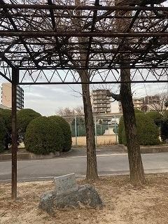附中歴史探訪 記念碑・記念樹10_d0383872_15022329.jpg