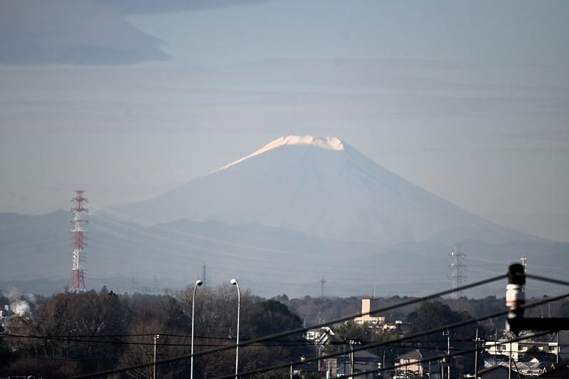 小畔川便り(ベニシジミ初見:2020/2/12)_f0031682_10294372.jpg