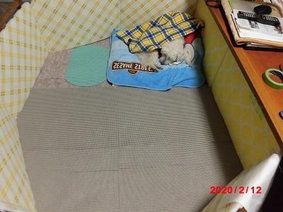 獅子丸の車椅子_b0231886_20483886.jpg