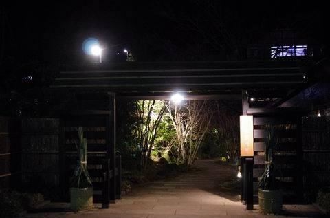 1/1 新年から箱根湯寮へ。_e0094492_14493319.jpg