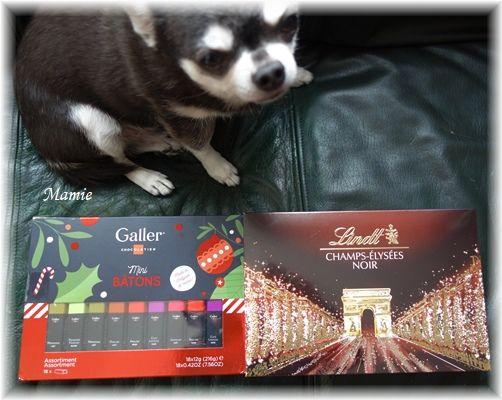 Belgian chocolate _d0387712_13231515.jpg