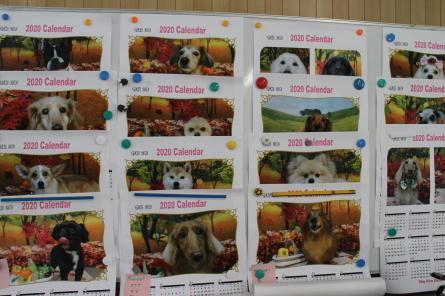 愛犬カレンダー♪_f0170713_08344633.jpg