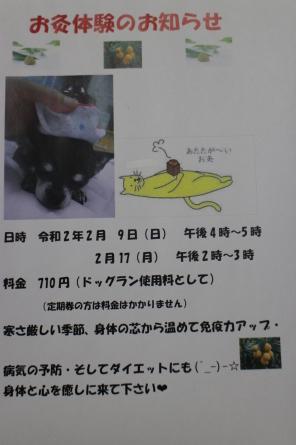 愛犬カレンダー♪_f0170713_09225338.jpg