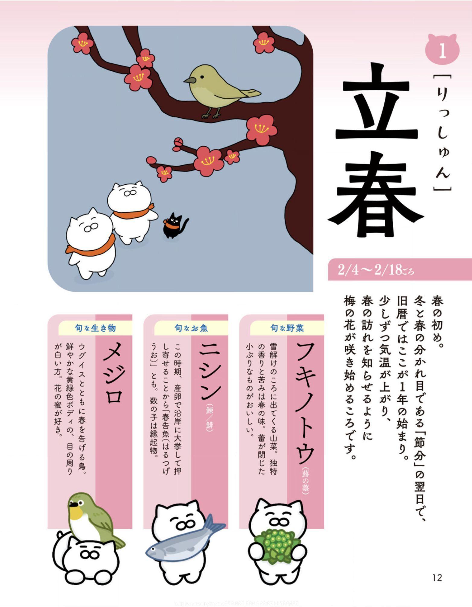 スズメとヒヨドリが和解_c0025115_21352036.jpg