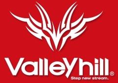 [バス]バレーヒル 新製品 LV-500GP TG重低音入荷しました。_a0153216_17535153.jpg