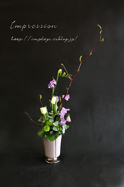 定期装花から チューリップ:ノースキャップ_a0085317_21412279.jpg