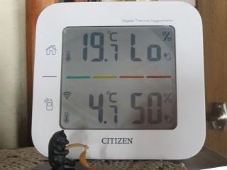 今日も暖かくプラスの気温_b0405523_11135337.jpg