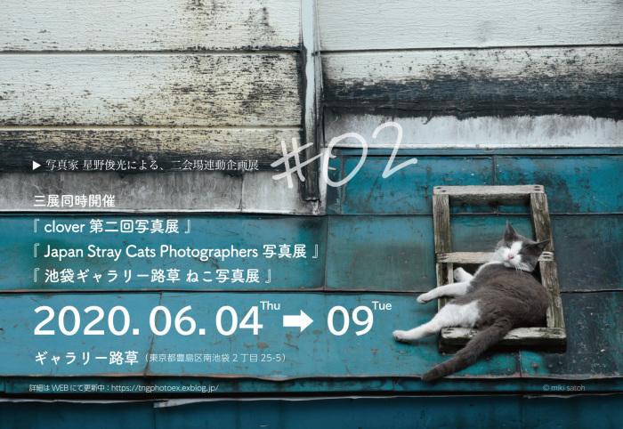 池袋「ギャラリー路草」にて猫写真展3タイトル同時開催!_c0194541_17410082.jpg