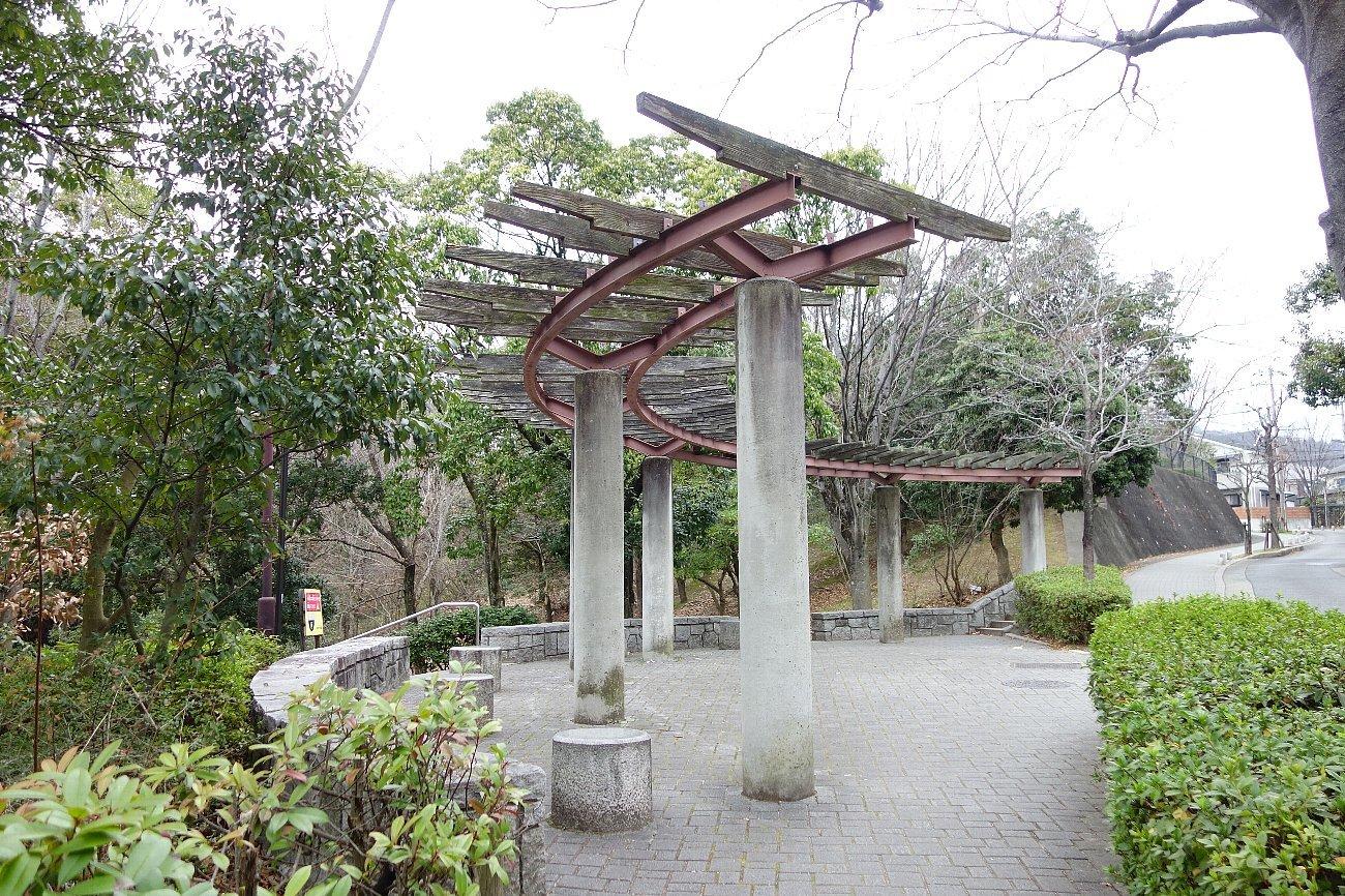 高槻市の上の池公園_c0112559_08592805.jpg