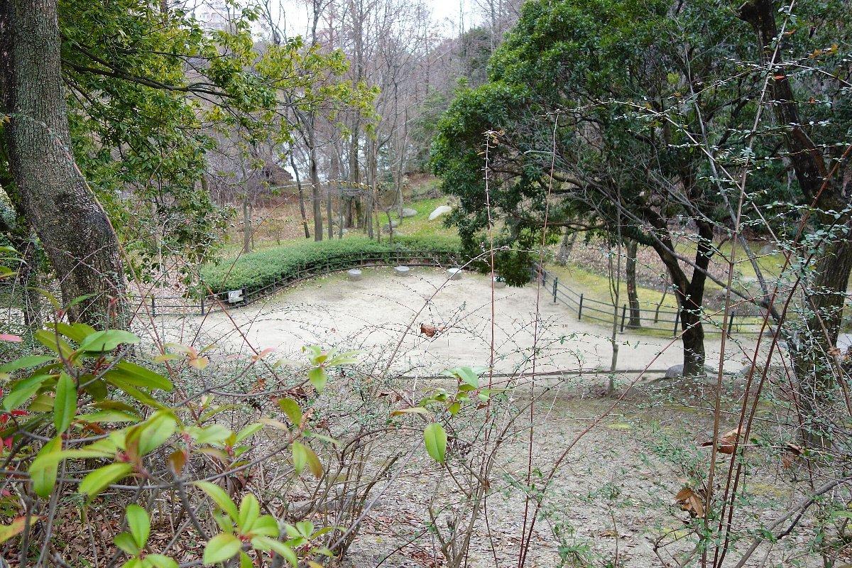 高槻市の上の池公園_c0112559_09002945.jpg