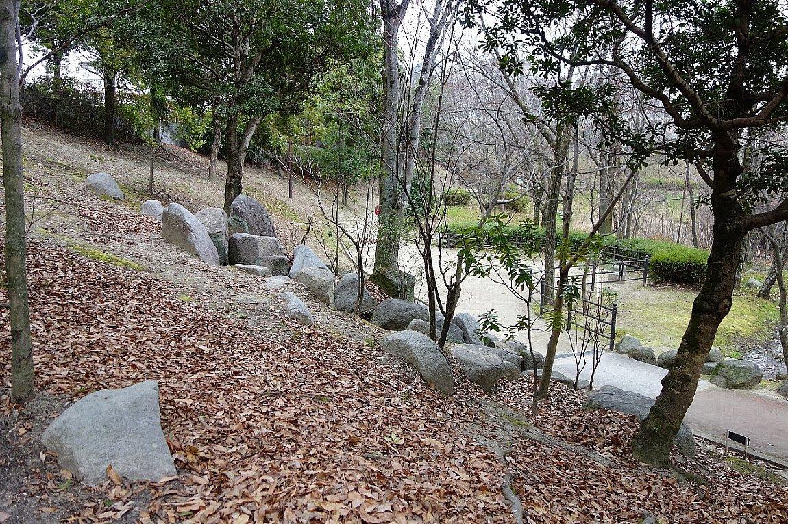 高槻市の上の池公園_c0112559_09032667.jpg