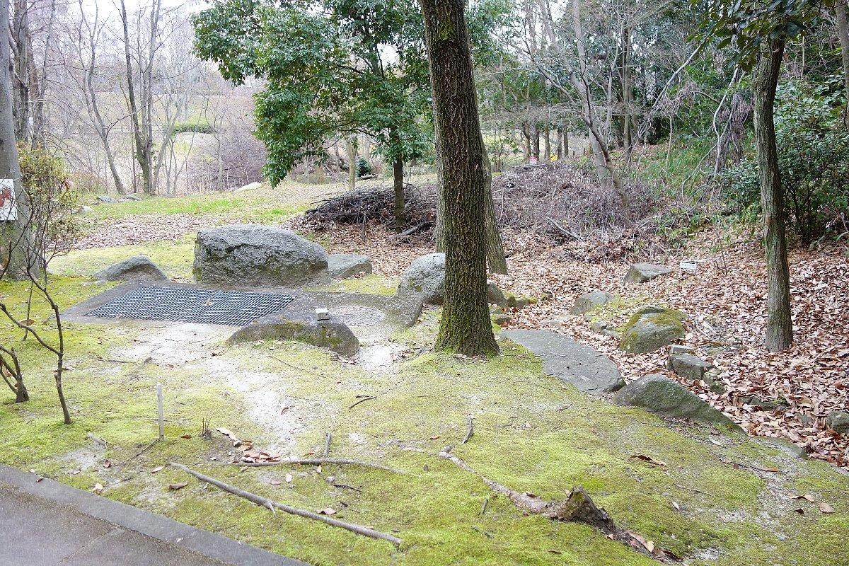 高槻市の上の池公園_c0112559_09034473.jpg