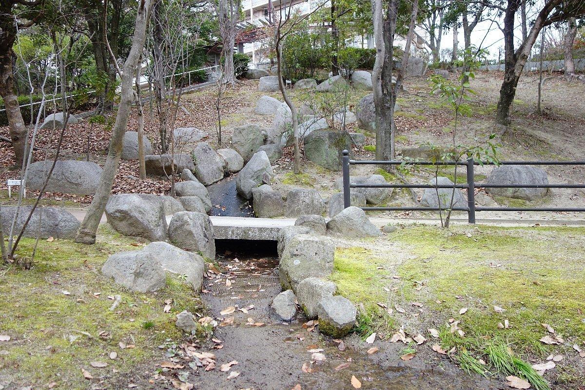 高槻市の上の池公園_c0112559_09045269.jpg