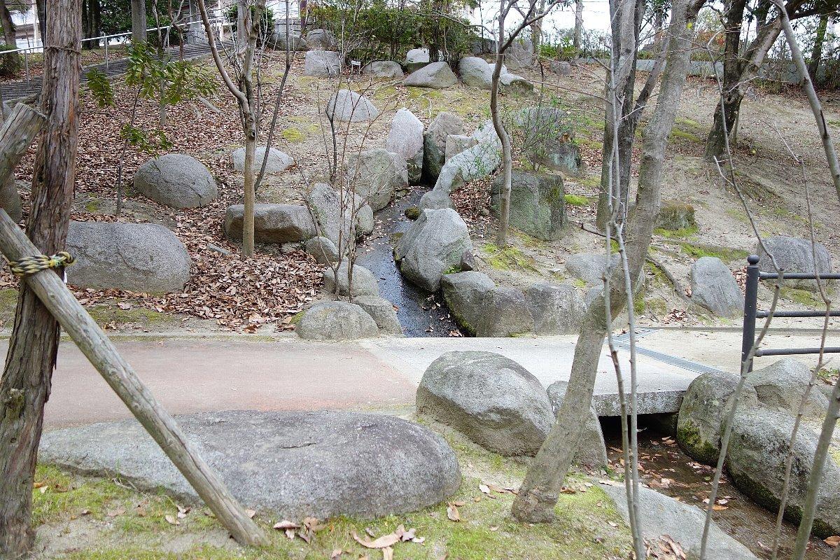 高槻市の上の池公園_c0112559_09060444.jpg