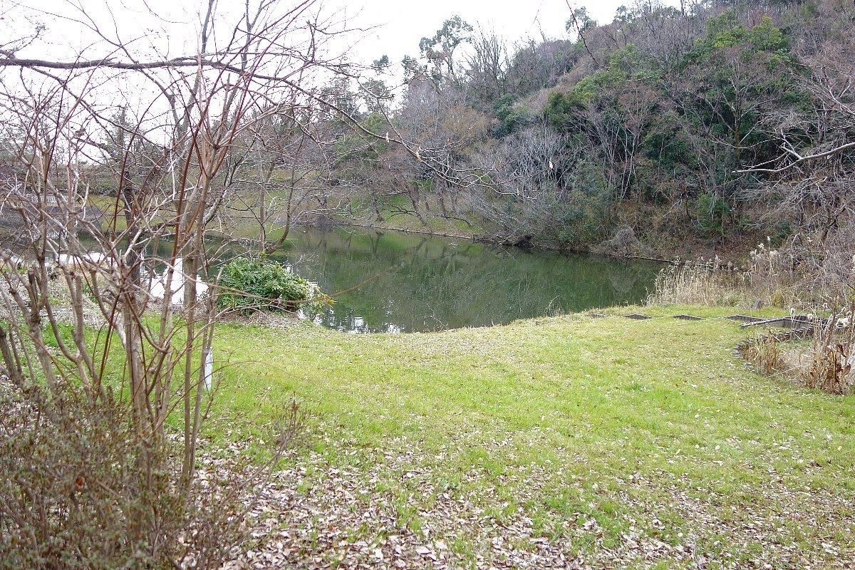 高槻市の上の池公園_c0112559_09074969.jpg