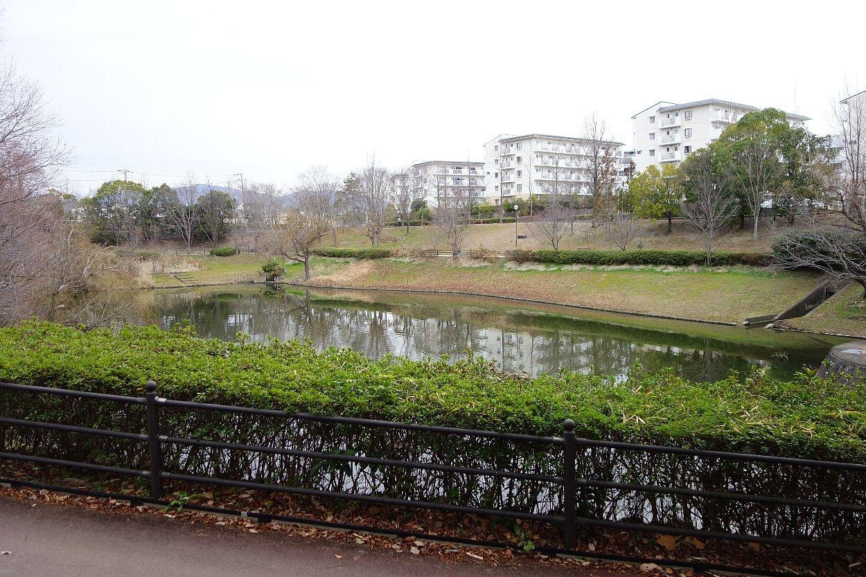 高槻市の上の池公園_c0112559_09094458.jpg