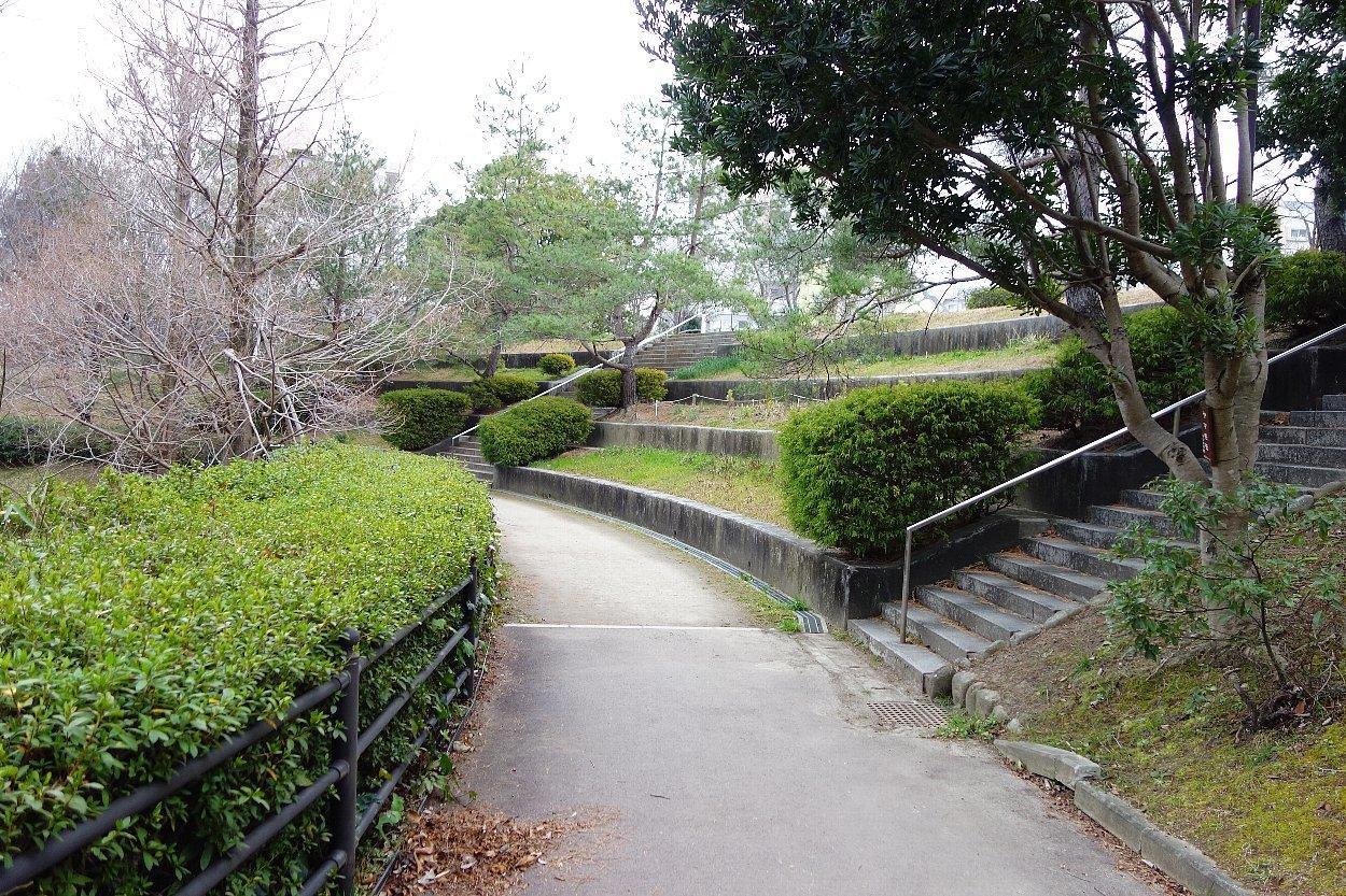 高槻市の上の池公園_c0112559_09101270.jpg