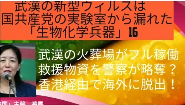 鳴霞さんが語る新型肺炎(武漢肺炎)の現状_d0083068_11522407.jpg