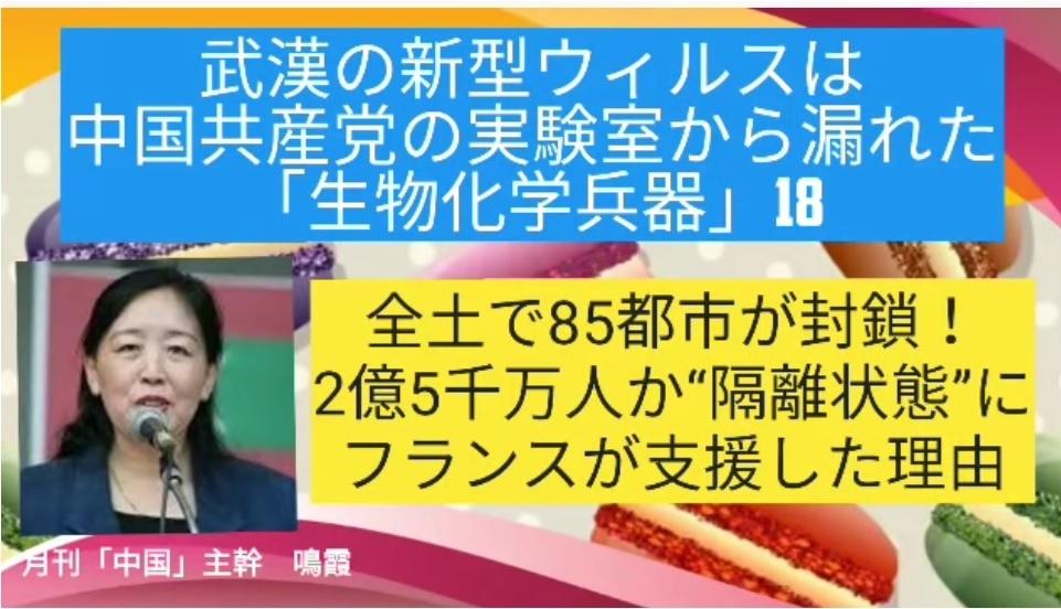 鳴霞さんが語る新型肺炎(武漢肺炎)の現状_d0083068_12150512.jpg