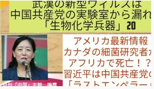 鳴霞さんが語る新型肺炎(武漢肺炎)の現状_d0083068_12243302.jpg