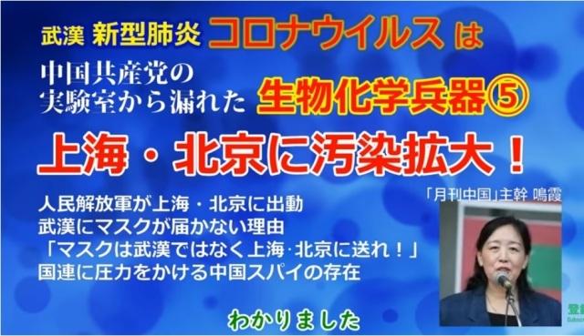 鳴霞さんが語る新型肺炎(武漢肺炎)の現状_d0083068_13314793.jpg