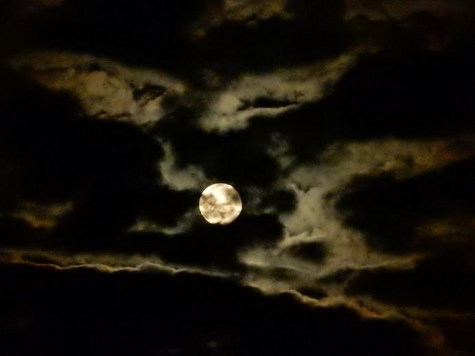 雲間に昇る十六夜月_e0175370_22353725.jpg