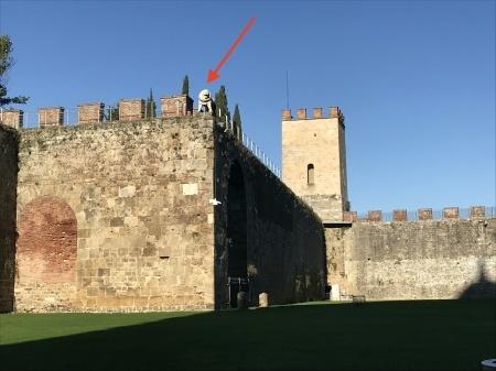 3ユーロでピサの『奇跡の広場』を上から眺める(前編)_a0136671_03564002.jpeg