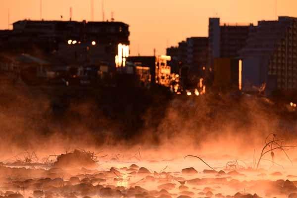 多摩川の朝_f0173596_16000252.jpg