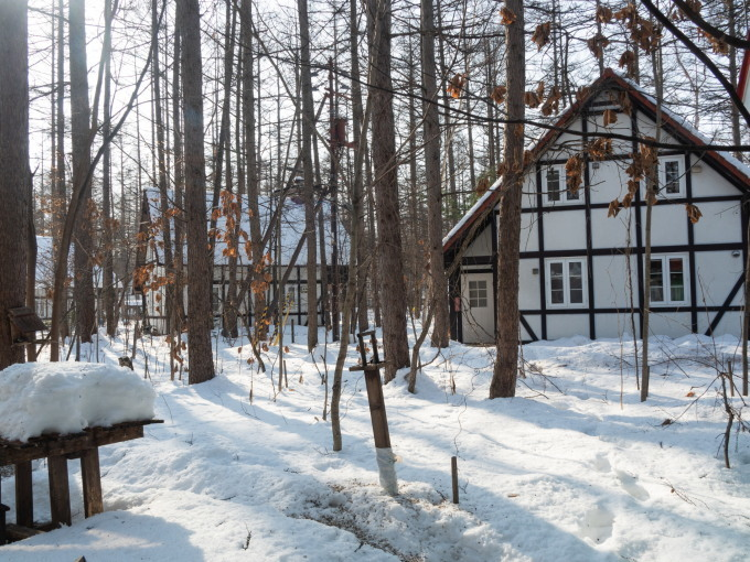 厳寒期の2月なのに・・記録的な暖かさで雪解けが進みます。_f0276498_20002800.jpg