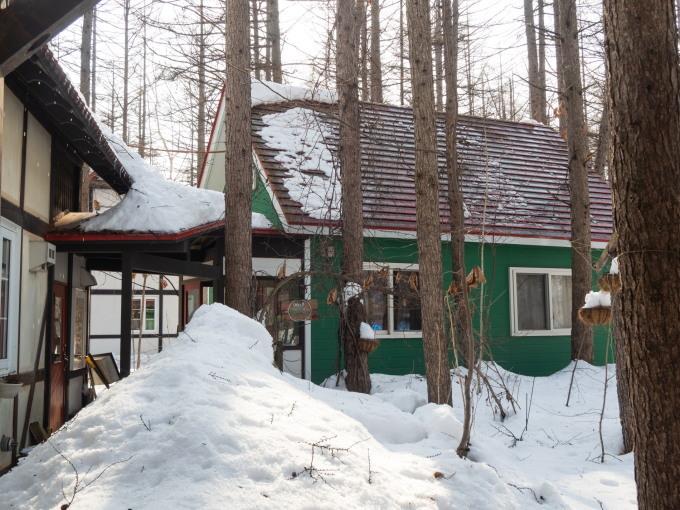 厳寒期の2月なのに・・記録的な暖かさで雪解けが進みます。_f0276498_20004167.jpg