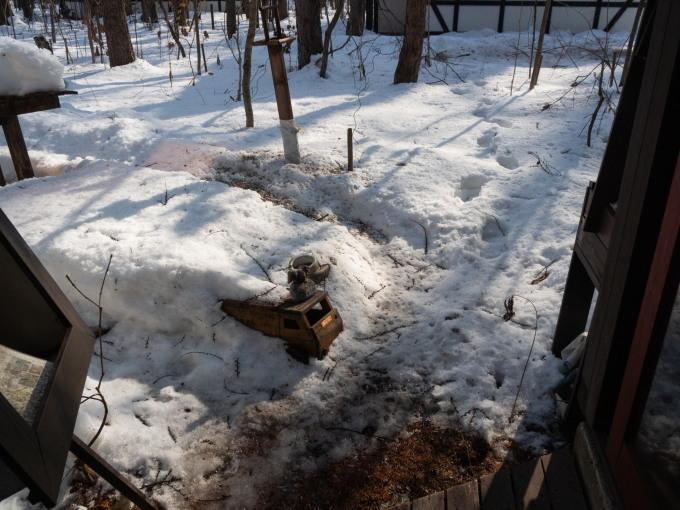 厳寒期の2月なのに・・記録的な暖かさで雪解けが進みます。_f0276498_20010105.jpg
