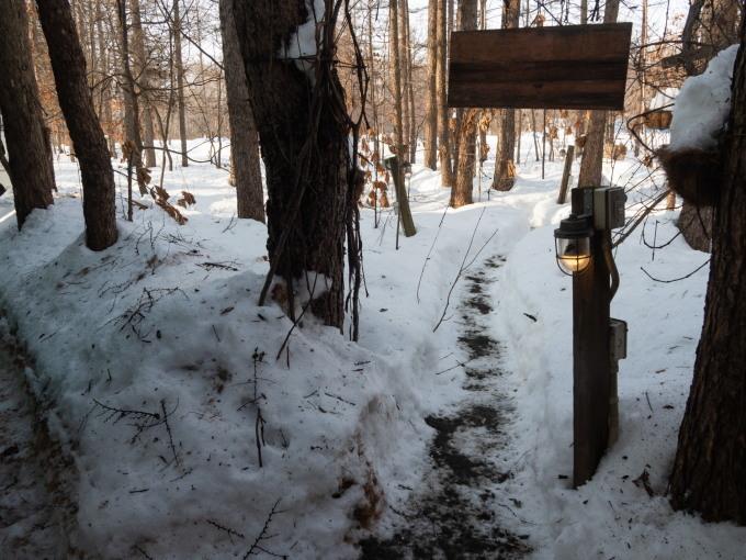 厳寒期の2月なのに・・記録的な暖かさで雪解けが進みます。_f0276498_20011175.jpg