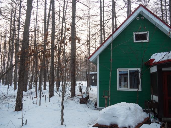 厳寒期の2月なのに・・記録的な暖かさで雪解けが進みます。_f0276498_20013133.jpg