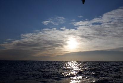 太平洋を船は走る_e0077899_7531380.jpg