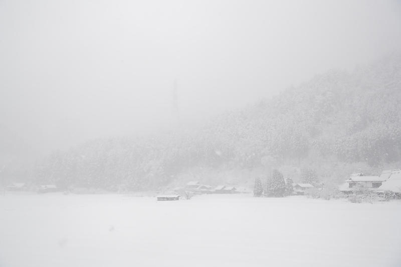寒波到来!待望の雪景色@美山茅葺きの里 其の二_f0032011_16191020.jpg