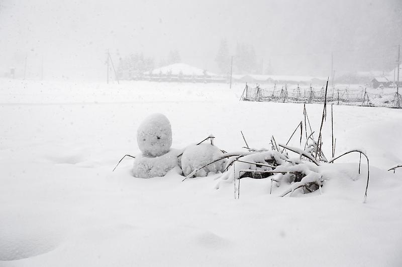寒波到来!待望の雪景色@美山茅葺きの里 其の二_f0032011_16191036.jpg