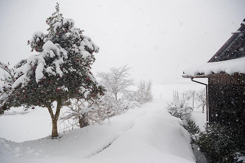 寒波到来!待望の雪景色@美山茅葺きの里 其の二_f0032011_16191070.jpg